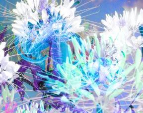 Floral Composition #3